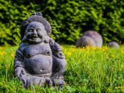 A Feng Shui Mindset For Success